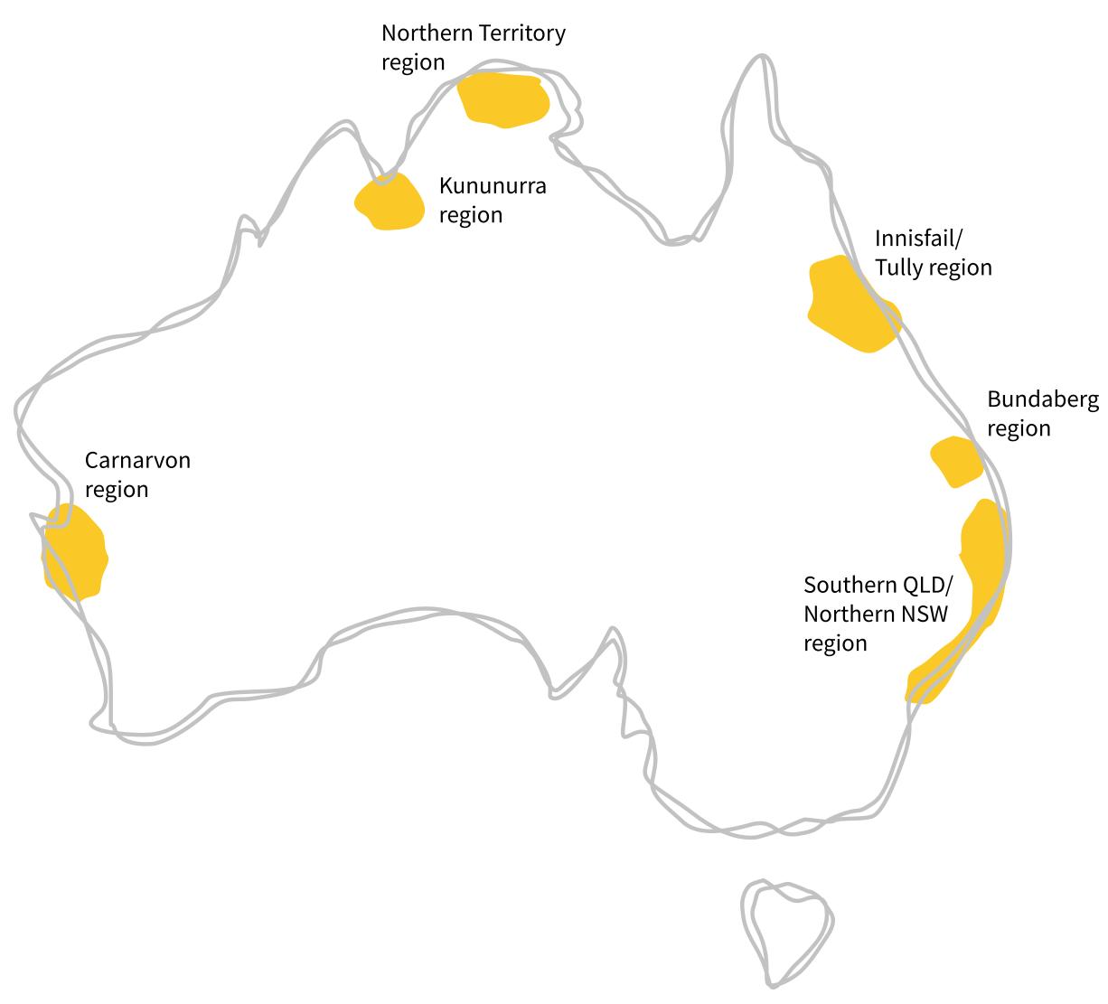 Australian Bananas - All About Bananas - The Banana Story